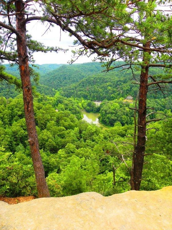 Clay County Kentucky - Home